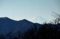 キスゲ平から見える富士山