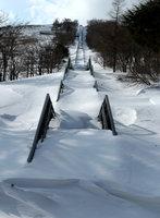 冬 階段(2) 2015-02-16
